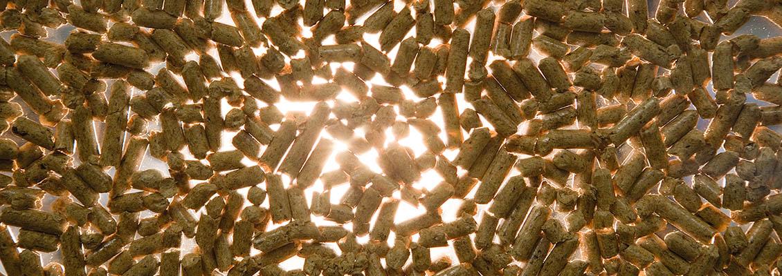 Drevosplyňujúce kotle na biomasu Viessmann Vitoligno
